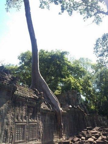 カンボジア訪問時の記録